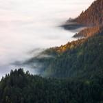 fale mgły otulające zbocza górskie..