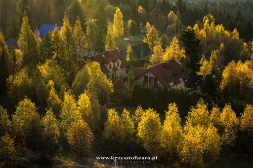 promienie docierają do pobliskich domostw i lasów..