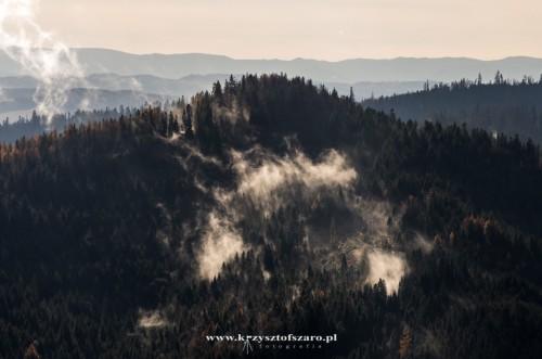 lasy ciągle parowały....