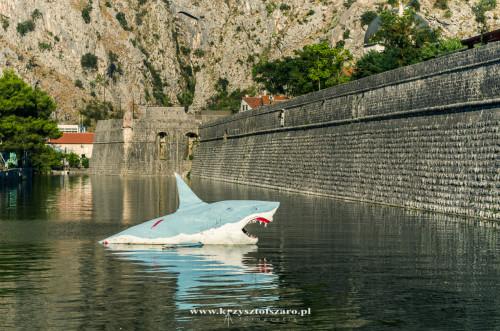 rekin strzegący wód kotorskich :-)