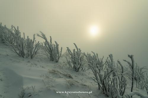 słońce delikatnie się przebija przez warstwę chmur....