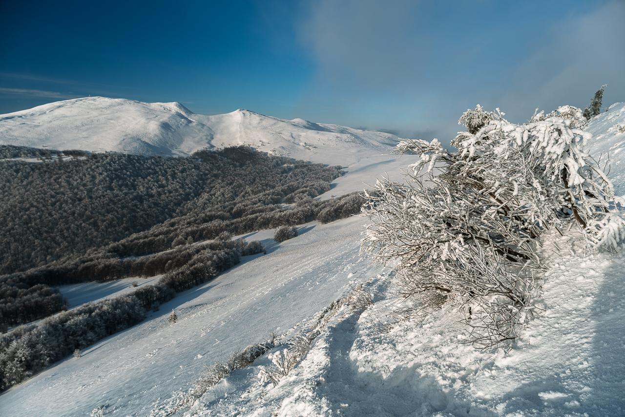 zerknięcie na Tarnicę i Szeroki Wierch